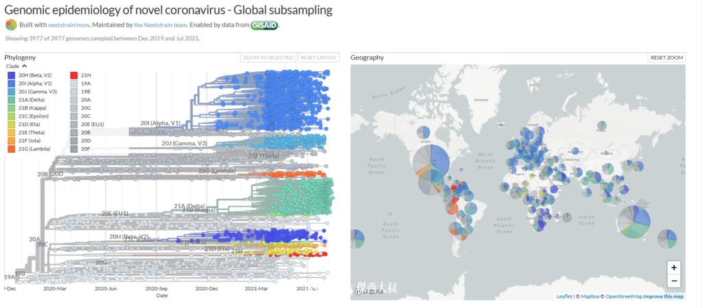全球COVID-19疫情風險評估工具 懶人包整理